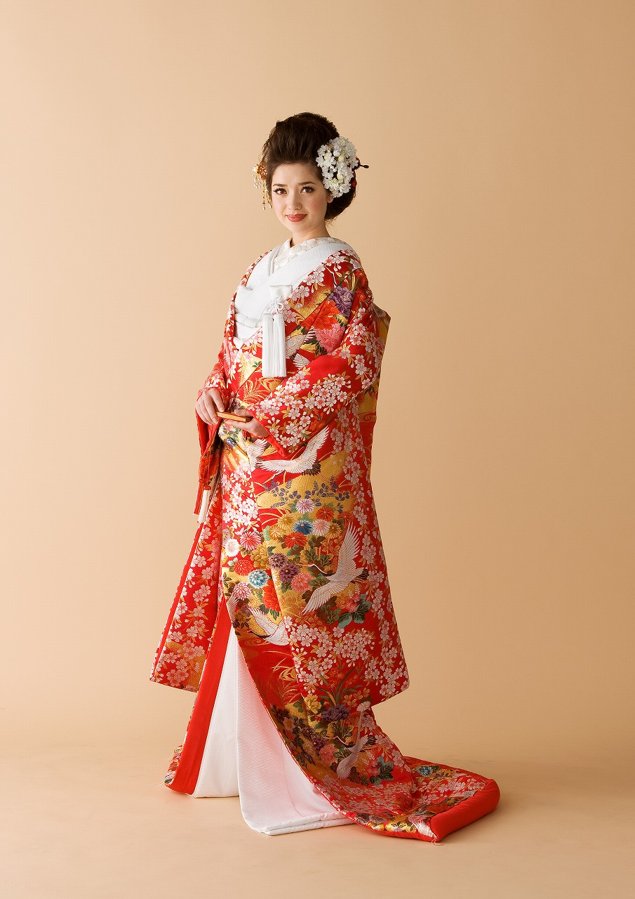 聚宝桜花紋-B0550-00