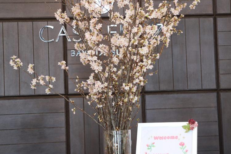 桜を使った装飾でお花見気分を♪
